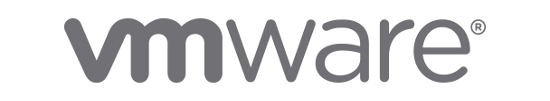 VMware partners AN Security, Hampshire